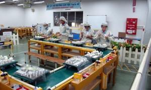 Công ty Xuân Mai chú trọng đến công tác an toàn vệ sinh lao động